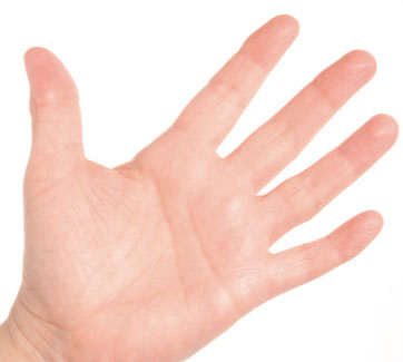 hand 人差し指よりも薬指が長い場合は、男性ホルモンが多く、薬指よりも人差し指...  男と女