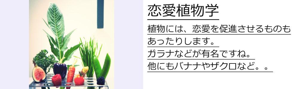 test1-syokubutu
